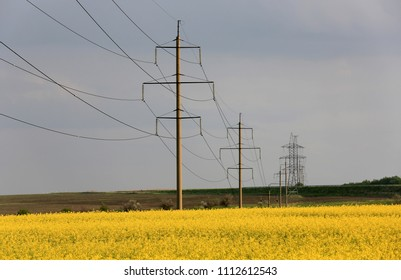 High-voltage line on rapeseed field in evening light