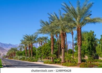 Highway 111 in Indian Wells, California in the desert of the Coachella Valley.