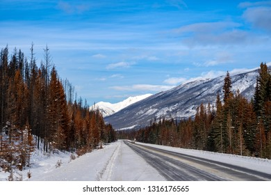 Highway 93 through Kootenay National Park during a sunny winter day