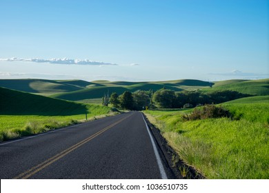 Highway among wheat fields in the Palouse region of eastern Washington state