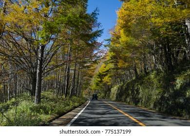 highway in evening Autumn
