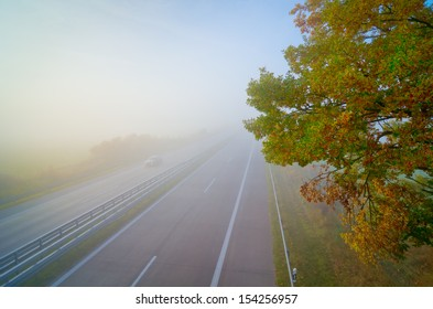 highway, fog, autumn, foliage