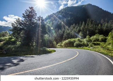The highway is in green forest.
