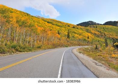 Highway leads to the Big Cottonwood Canyon, Utah