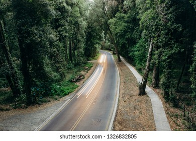 Highway in the middle of the forest