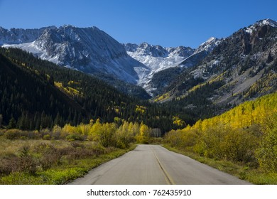 Highway  passing through our forest of yellow aspen trees, toward snowy mountains near Aspen, Colorado