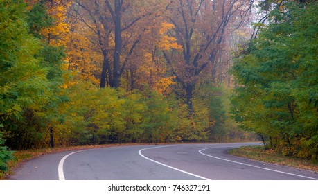 Highway through the autumn forest, a sharp turn of the road.