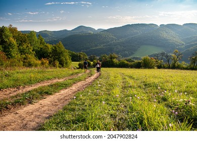 Hike in beautiful nature, green hills, flowers on the meadow, walk with friends. Sunset in Biele Karpaty.