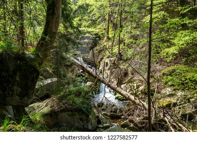 Hike in the green valley with a waterfall, forest