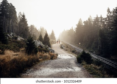 Hike in the morning towards Brocken, Harz