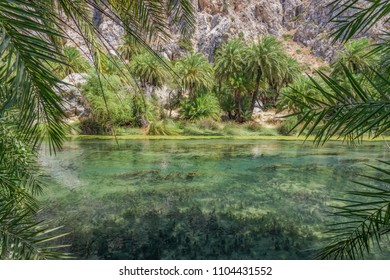 Hike through Preveli gorge with cold sweet water and palm trees at summer vacation