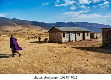 Hikein Ngorongoro Conservation Area Nationnal park Highlands with Masai Guide