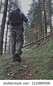 A hiker with a backpack on his way through the forest photographed from below