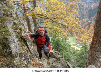 hiker in the Black Forest at autumn, Germany