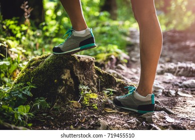 Hiker boots on a forest trail