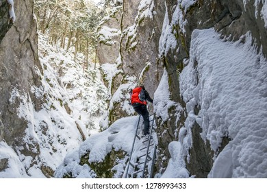 Hiker climbing an iron ladder, inside a canyon, during a Winter hike, with rocks and trees around, covered with fresh snow - Seven Ladders Canyon (Sapte Scari) in Piatra Mare mountains, Romania