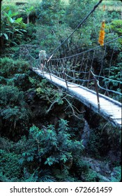 Hiker crossing suspension bridge over river, Kangchenjunga Himalayas, Asia