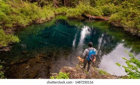 Hiker with dog overlooking Tamolitch Blue Pool located on the McKenzie River Trail, Oregon, usa