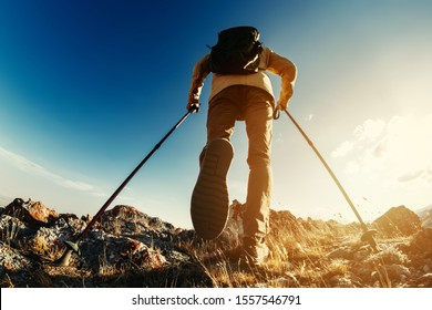 Hiker goes with trekking poles uphill against sunset sky and sun. Hiking concept