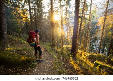 A hiker in the golden light of sunset through the autumn trees while hiking up a trail in the mountains of France