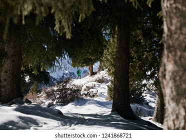 Hiker in green jacket hiking in the forest at snowy mountains background
