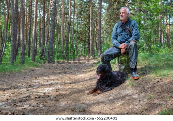 A hiker with his dog takes a break in the shady pine forest.