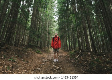 Hiker man in a red raincoat stands on a trail in the mountains,looks in camera, guy on a mountain hike. Full length photo of tourist in red jacket standing in background of big old coniferous trees