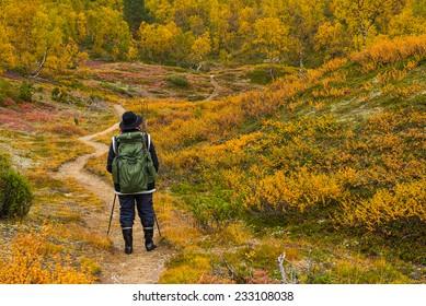 Hiker in northern landscape