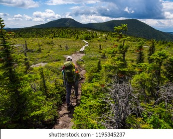 Hiker on Appalachian Trail in Maine, Lush Mountain Vista