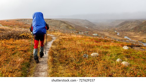 Hiker on the Kungsleden in autumn