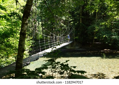 Hiker on suspension bridge over Ohanapecosh  river  in the Grove of the Patriarchs, Mount Rainier National Park