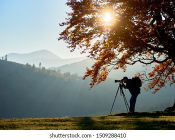 Hiker photographer taking picture of misty mountain landscape using camera on tripod on quiet autumn evening, standing on grassy valley under large tree with golden leaves under blue sky at sunset.