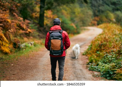 A hiker in a red coat and brown backpack walking with his white dog on a mountain path in spring or fall. Hiker, backpacker in autumn landscape. Mountain and trekking. Concept: Adventure, Art, Travel