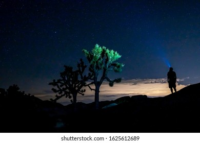 Hiker Silhouette with Head Torch in Joshua Tree Nationalpark