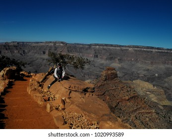 Hiker takes a break by a juniper tree on the South Kaibab Trail while descending down into the Grand Canyon in Arizona. Skeleton Point is visible behind him.