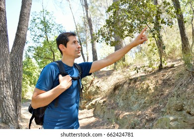 Hiker talking and pointing enjoying trek in beautiful mountain forest landscape.The National Park, Pyrenees