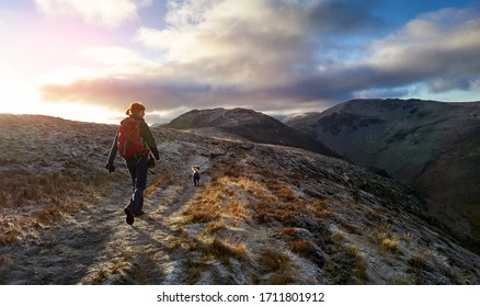 A hiker and their dog walking towards the mountain summit of High Spy from Maiden Moor at sunrise on the Derwent Fells in the Lake District, UK.