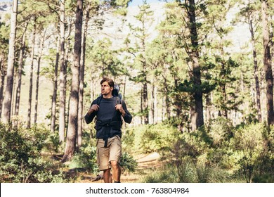 Hiker trekking on the trail in a forest. Man exploring nature walking through the woods.