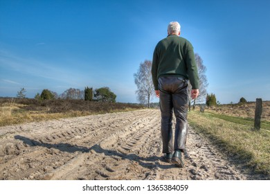 A hiker walks on a path of sand in the Lueneburg Heath. The flat landscape makes it pleasant and comfortable to hike in the Lueneburg Heath. Even seniors can undertake long walks here.