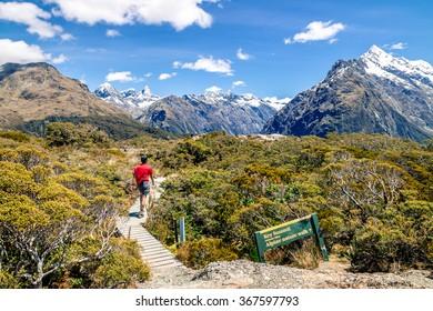 Hiker Walks the Trail to Key Summit, New Zealand