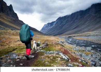 Hiker wih siberian husky in the Nallo Valley in Lapland - Sweden