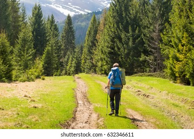 Hiker young man with backpack and trekking poles standing at the edge of a green meadow and looking at a summer outdoor mountain, rear view