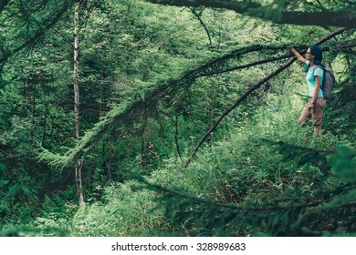 Hiker young woman with blue hair standing near the tree in summer forest and enjoying view of beautiful nature