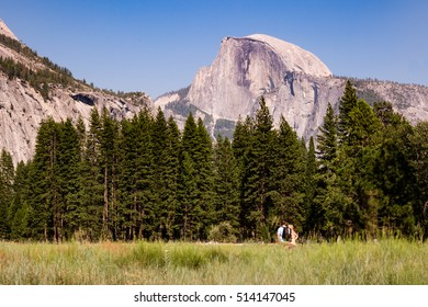 Hikers admire Half Dome at Yosemite National Park