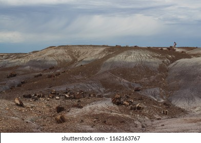Hikers in background on trail in Petrified Forest National Park, Arizona, USA