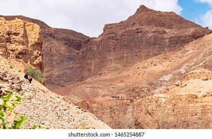 hikers enjoying the hiking trails on the cliffs and mountains of the ein gedi reserve above the david stream with mount Yishay in the background