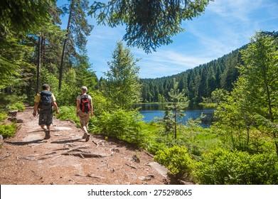 Hikers at the Herrenwieser See, Westweg, Forbach, Black Forest, Baden-Wuerttemberg, Germany, Europe