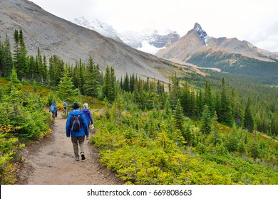 Hikers on the alpine trail in the Canadian Rockies along the Icefields Parkway between Banff and Jasper