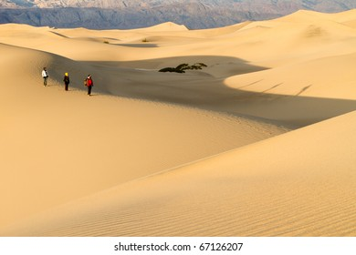 Hikers on an Early Morning Hike in the Desert