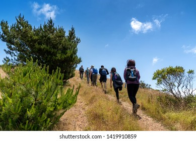 Hikers on trail to Mt. Livermore on Angel Island in San Francisco Bay